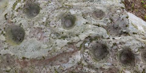 Baltynanima (WI018-036)